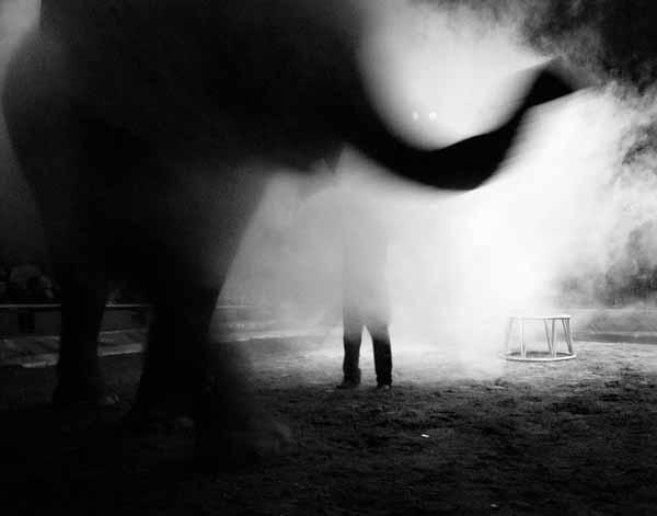 fotografo Gianmarco Vetrano
