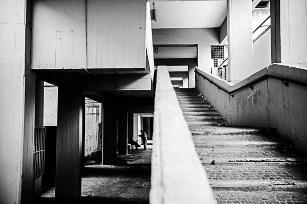 DLPhoto_36